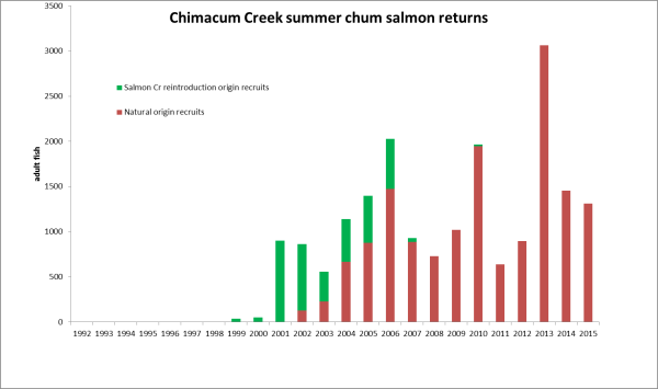 Chum escapement through 2016